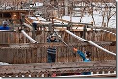 Семь вольеров свободно от снега!