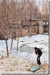 Уборка снега, помощь приюту