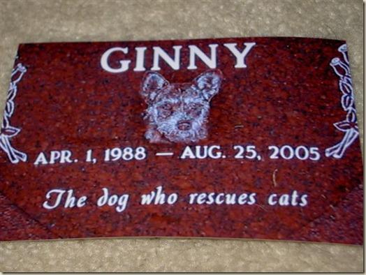 Джинни, Ginny