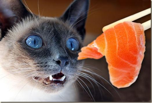 Сырое мясо и рыба