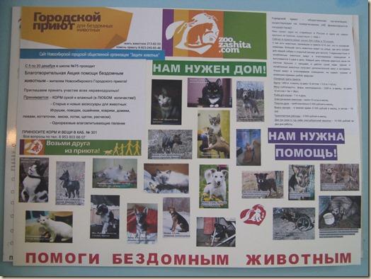 Благотворительная акция в школе №75