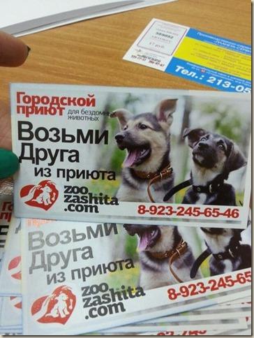 Билеты с рекламой