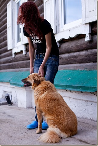 Собака Алиса