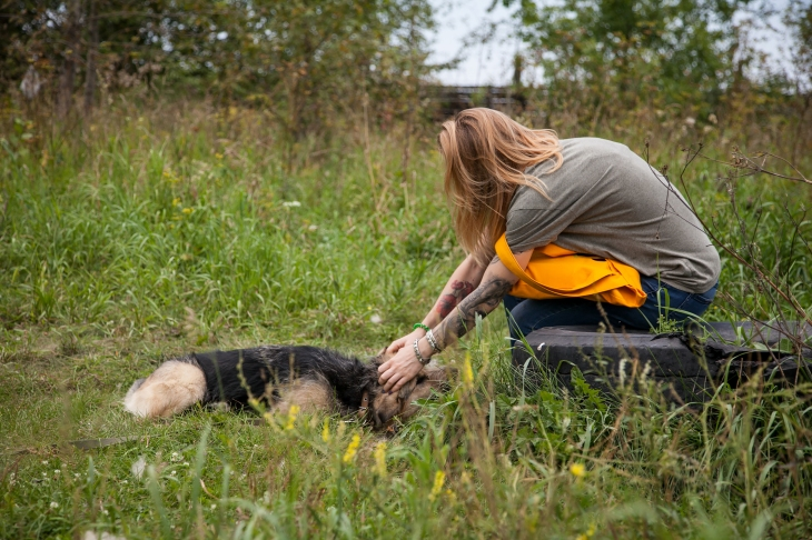 Зоозащитник — это не сумасшедшая женщина с тысячью кошек