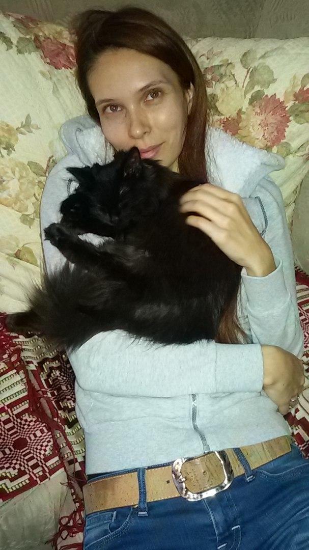 cat_sibirian_wonder_01