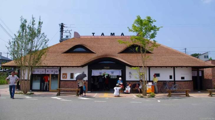 Станция Тама (бывшая Киси)