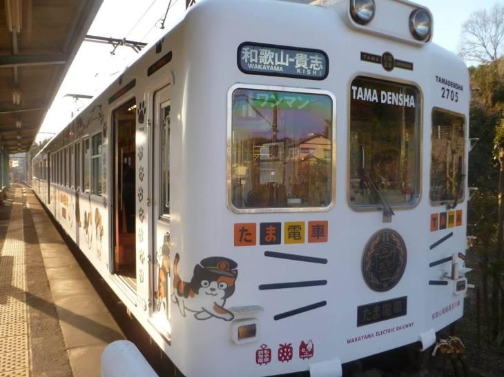Поезд кошки Тама