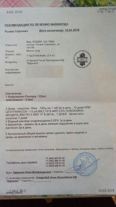 Ryzhik Sergeevich 7